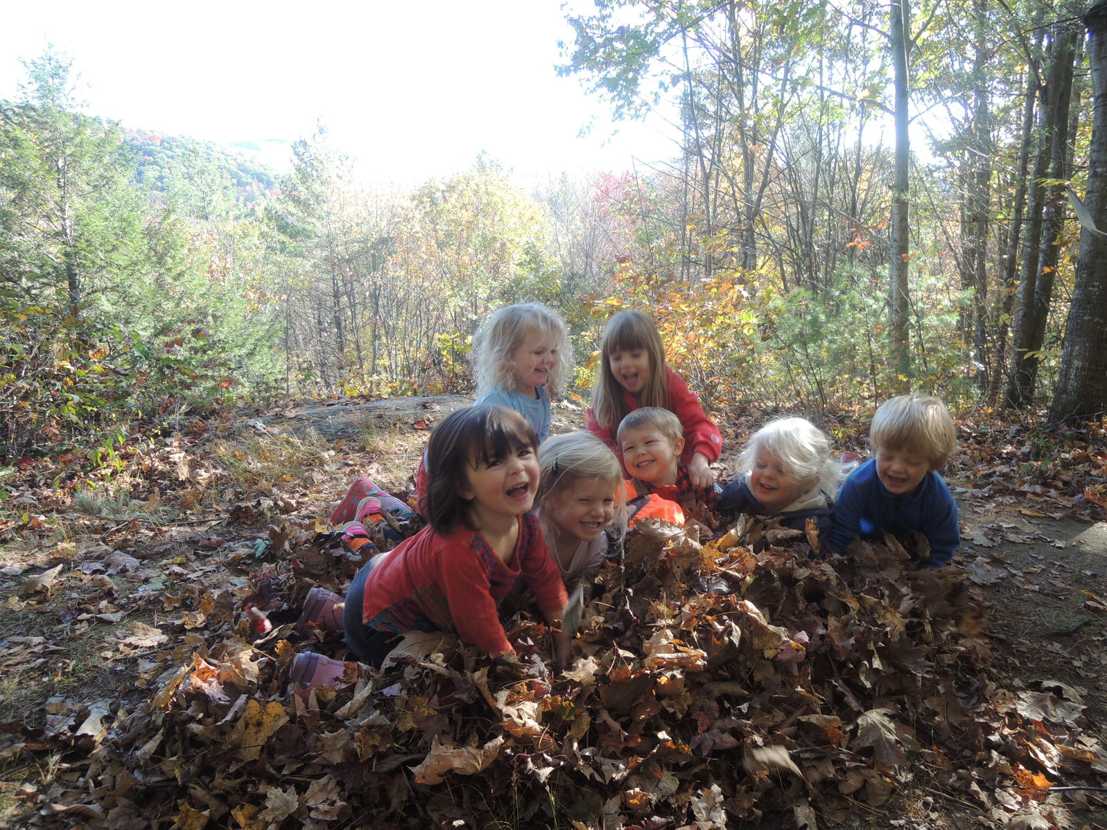 Leaf Pile Fun
