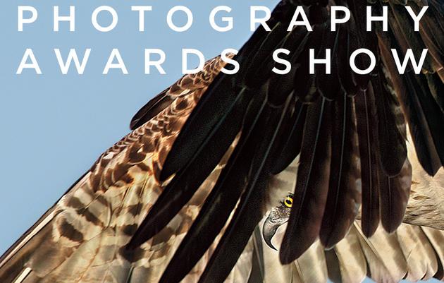 South Royalton Opening Reception: Audubon Photography Awards Exhibit