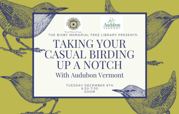 Taking Your Casual Birding Up a Notch with Audubon Vermont