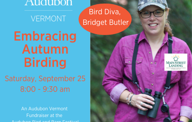 Embracing Autumn Birding