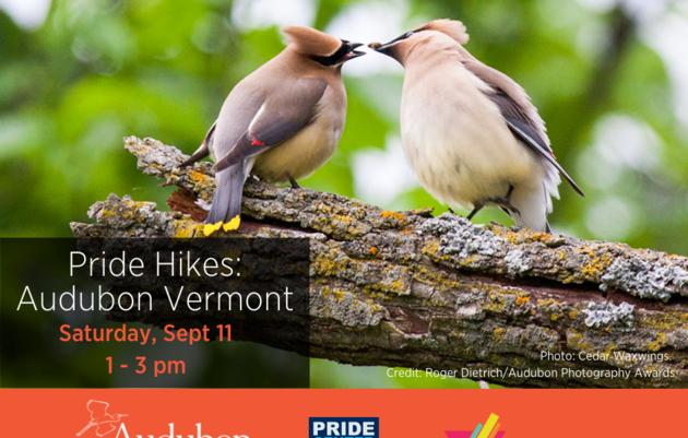 Pride Hikes: Audubon Vermont