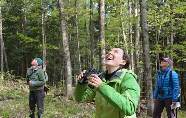 Audubon Vermont Birdathon