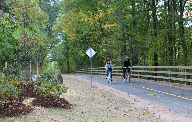 Plants for Birds:Burlington - Greenway (Bike Path) Rehabilitation