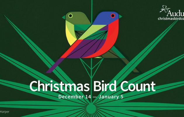 Audubon Christmas Bird Count - Vermont Circles