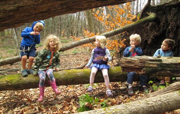 Forest Preschool