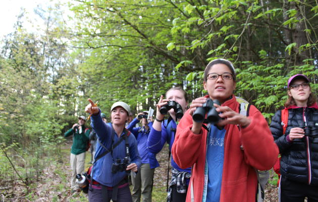 Join our Virtual Birdathon Team