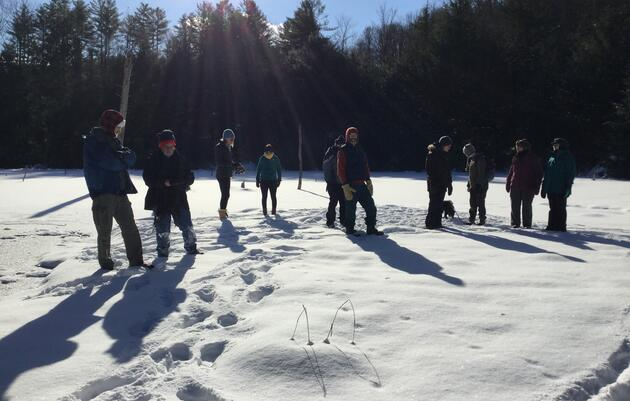 Pride Hikes: Hinesburg Town Forest