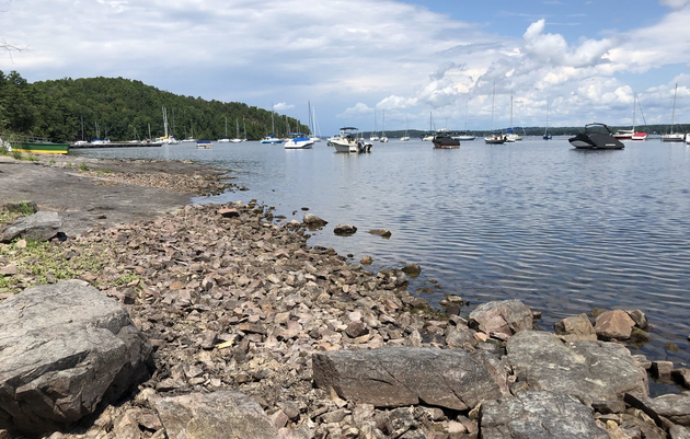 Pride Hikes: Shelburne Bay Park