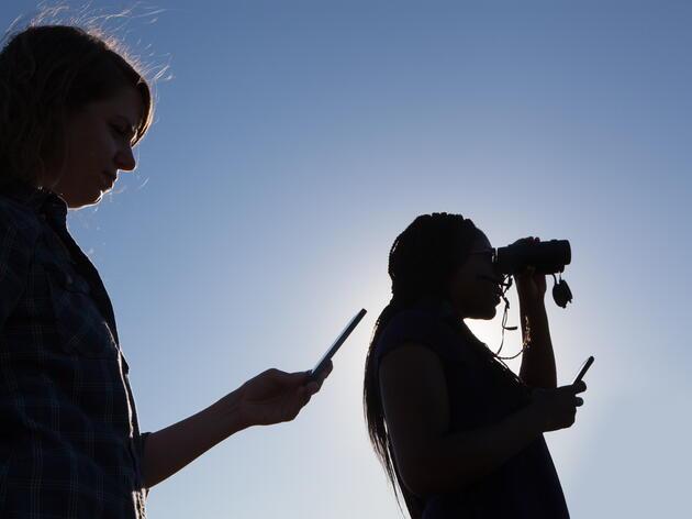 UVM Students Seeking Birding Buddies