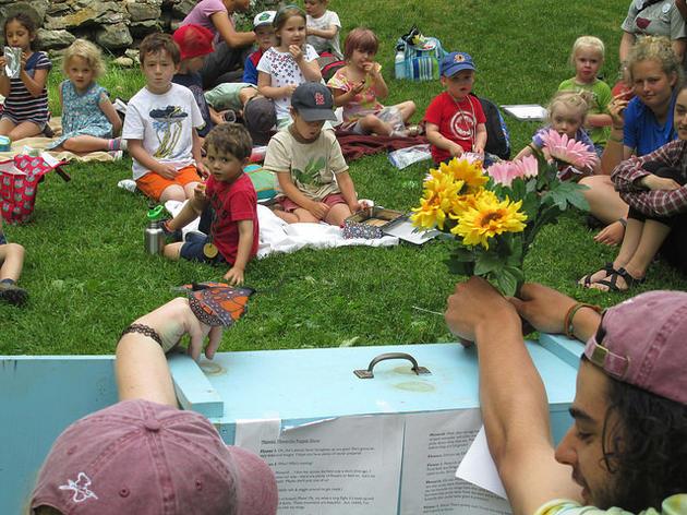 Audubon Summer Camp has started!