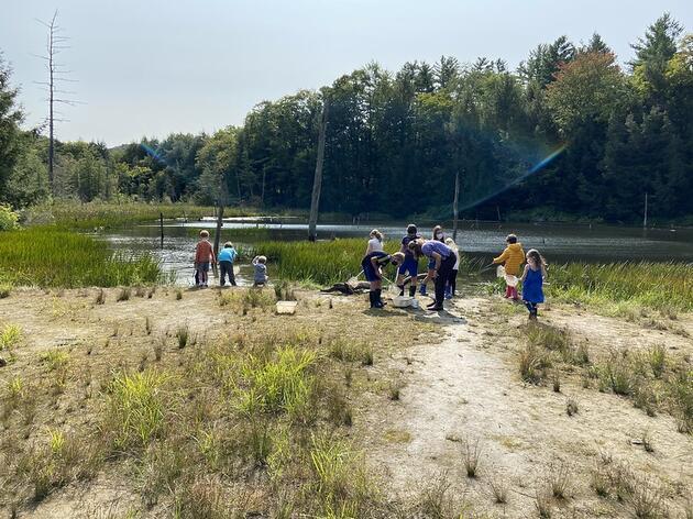 Beaver Pond Bioblitz Day!