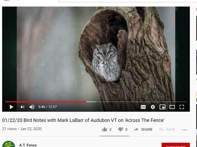 Across the Fence: 120th Audubon Christmas Bird Count