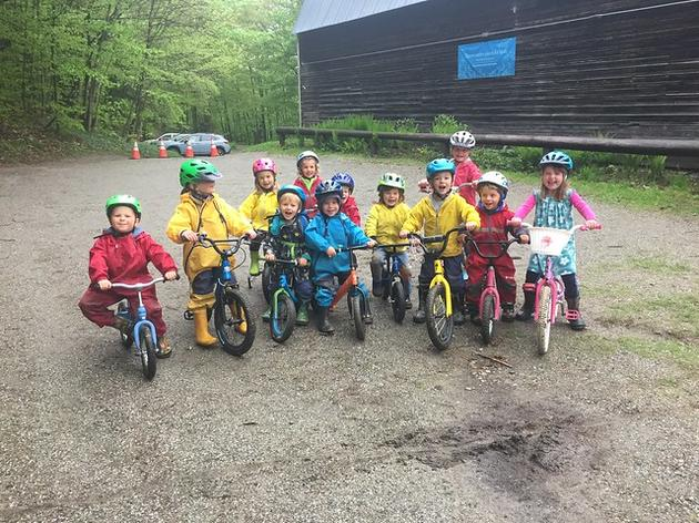 Last Spring Forest Playschool