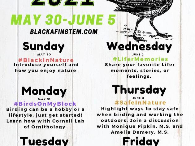 Black Birders Week 2021