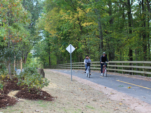 Plants for Birds:Burlington - Greenway (Bike Path) Rehabilitation