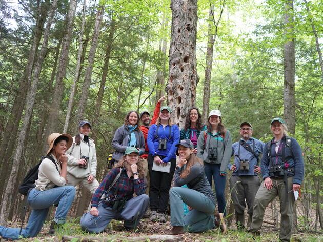 Audubon Vermont's Staff Birdathon Adventure