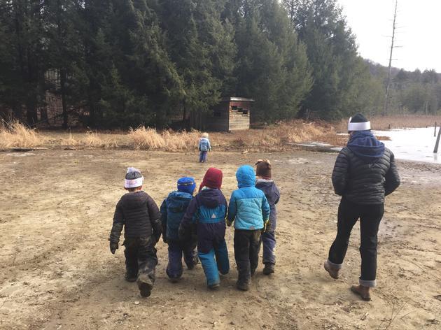 A Trip to Beaver Pond