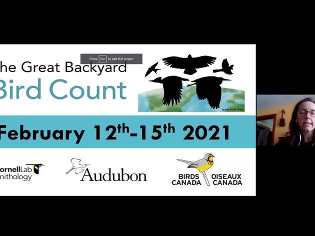 Ask A Naturalist: Great Backyard Bird Count
