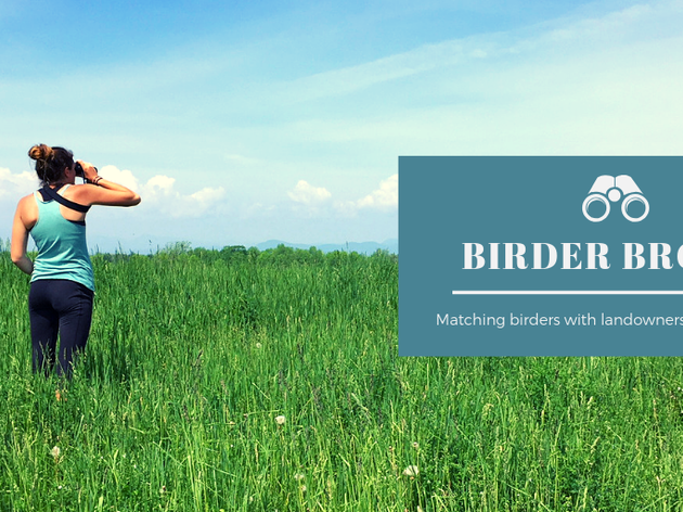 What is Birder Broker?