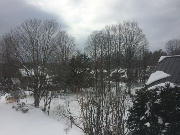 Spring Snow and Gratitude