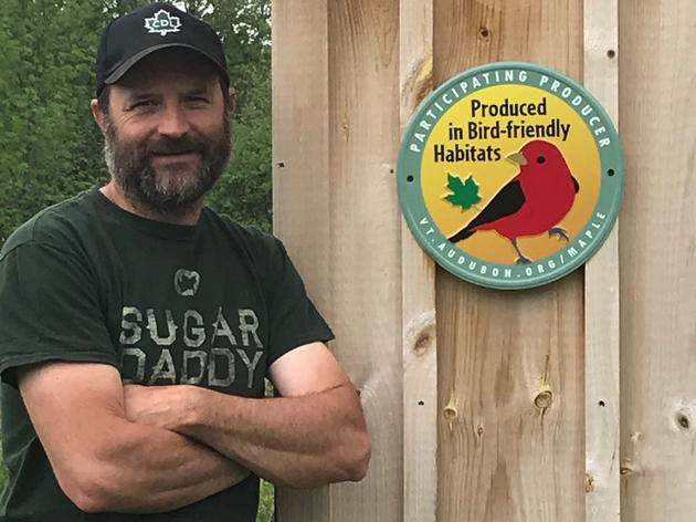 Becoming a Bird-Friendly Maple Producer