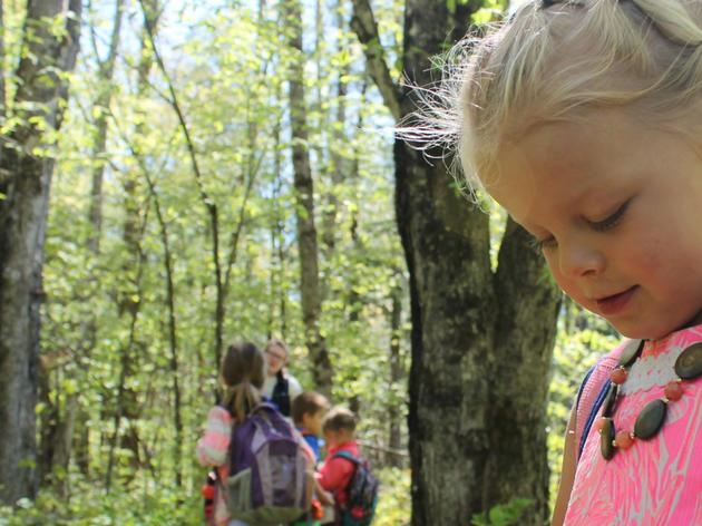 Preschool and Kindergarten Education Programs