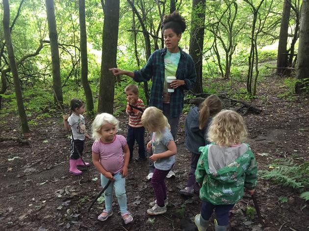 Green Mountain Audubon Center Summer Camps Cancelled