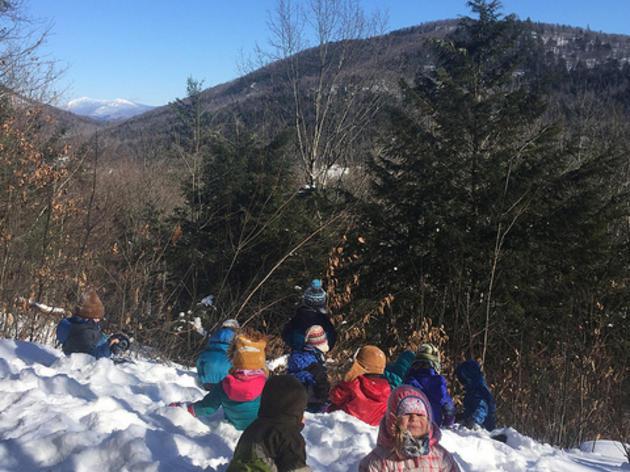 Snowy Lookout Rock
