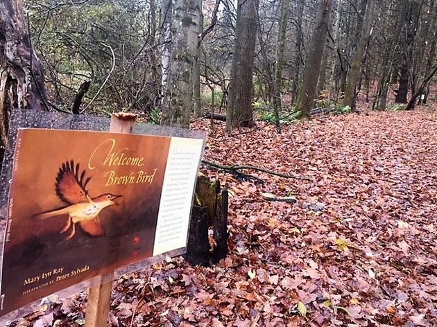 StoryWalk® at the Green Mountain Audubon Center!