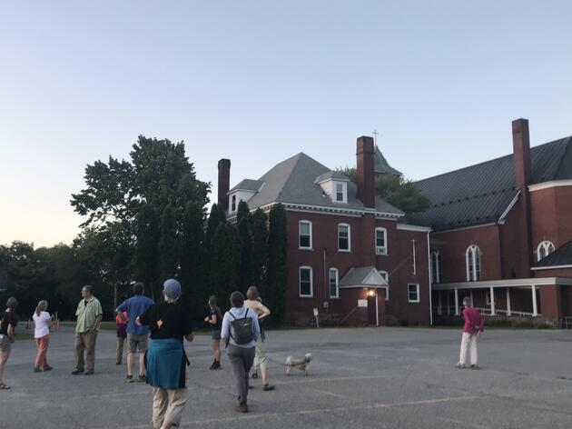 Chimney Swift Alert and Making the Mosquito Connection