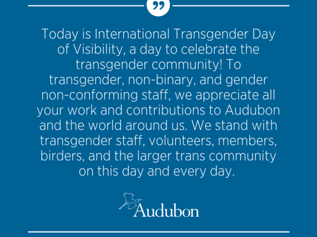 Transgender Day of Visibility
