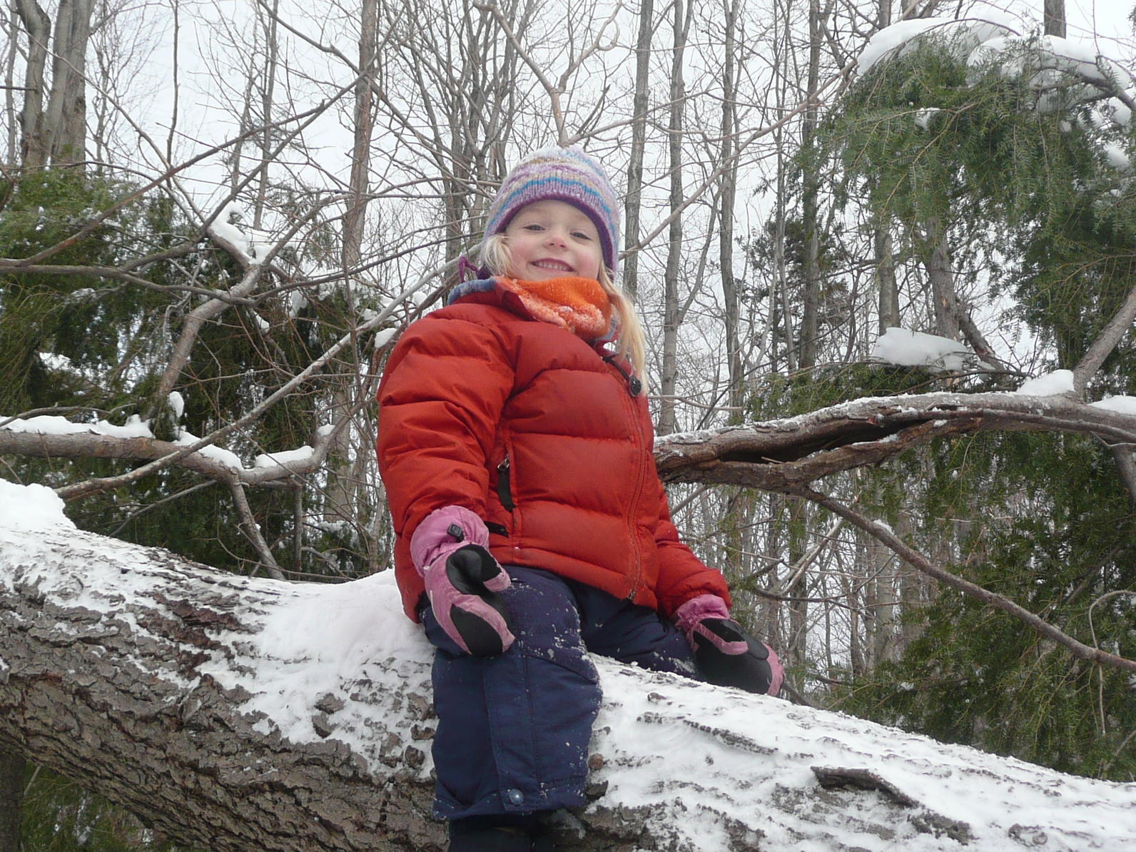 Winter Forest Preschool