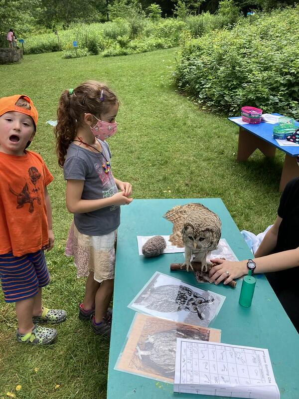 Two campers look at a taxidermy owl with excitement and trepidation