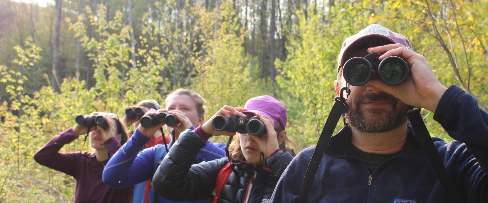 Birdathon Audubon Vermont