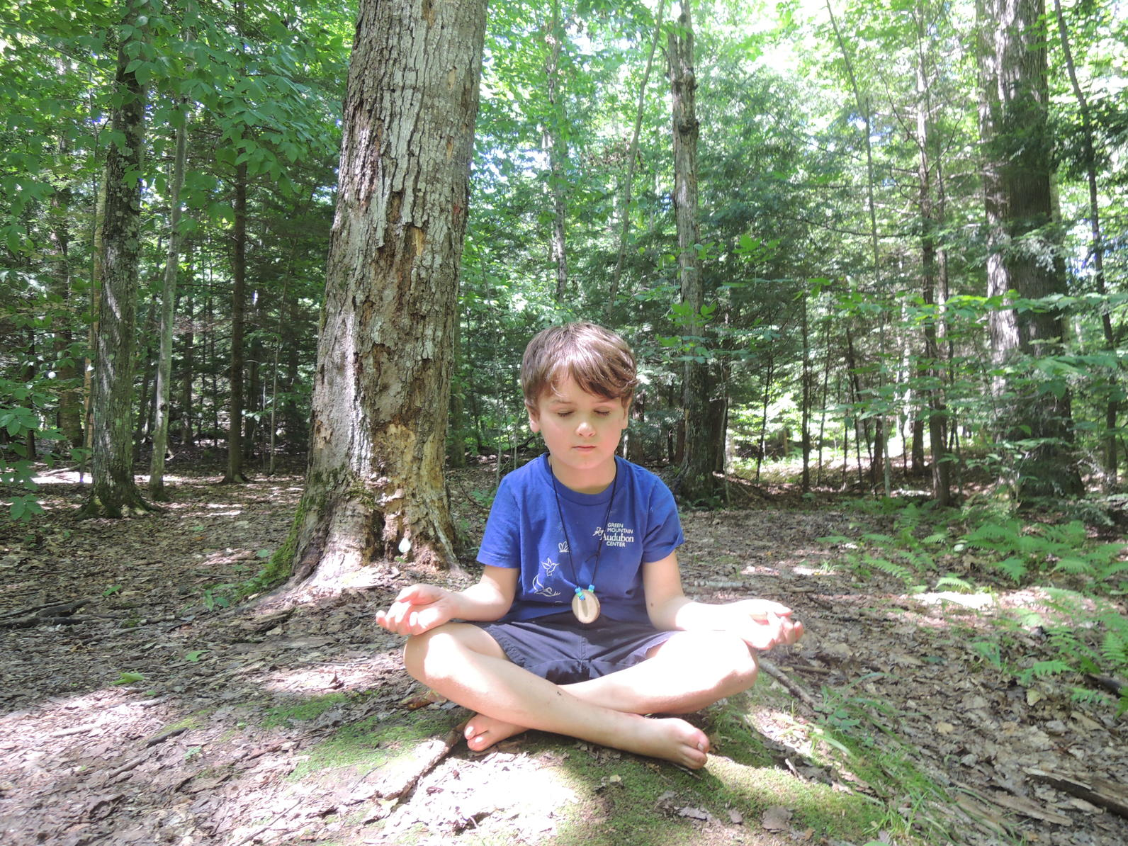 Relaxing Yoga at Camp