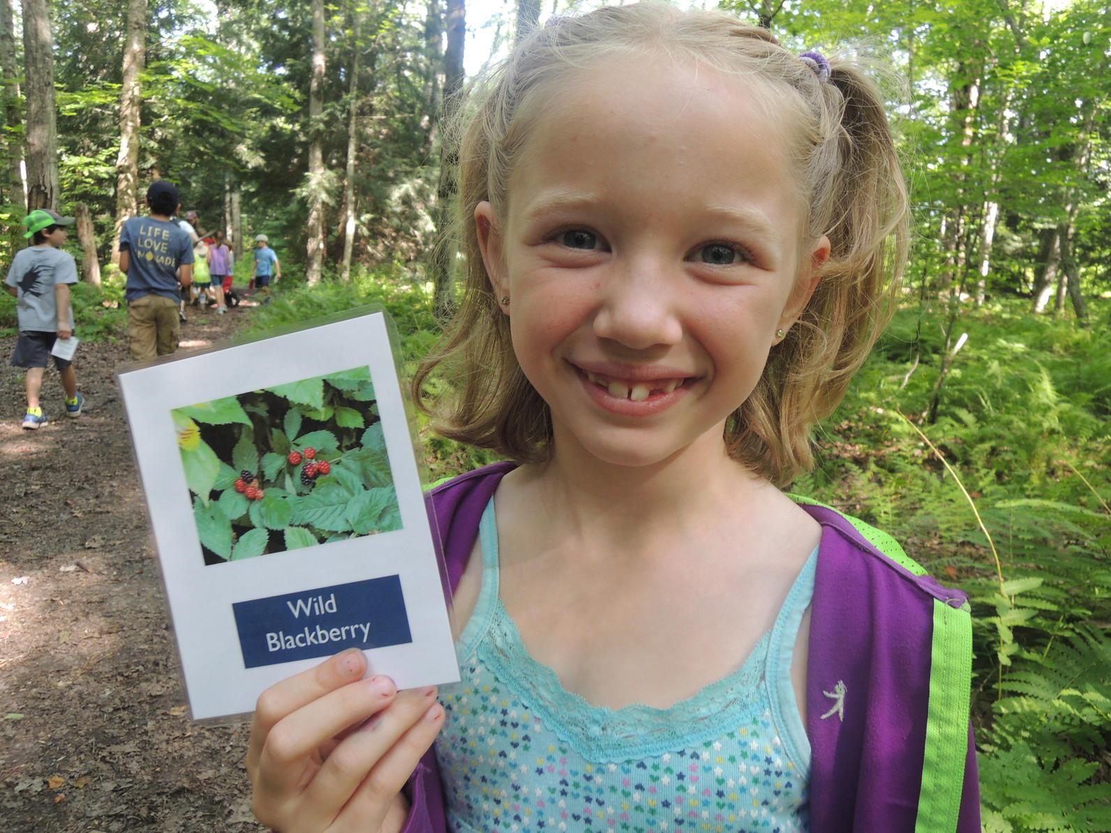 Wild edible walk camp