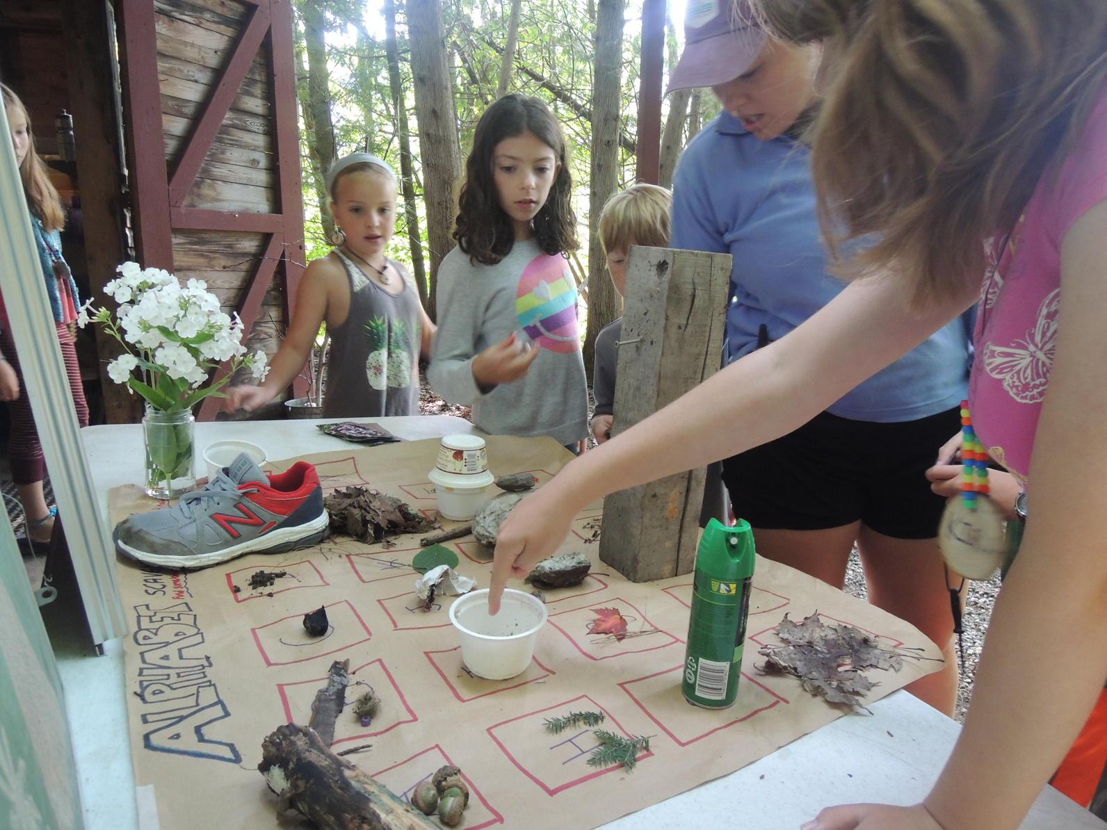 ecology camp wild