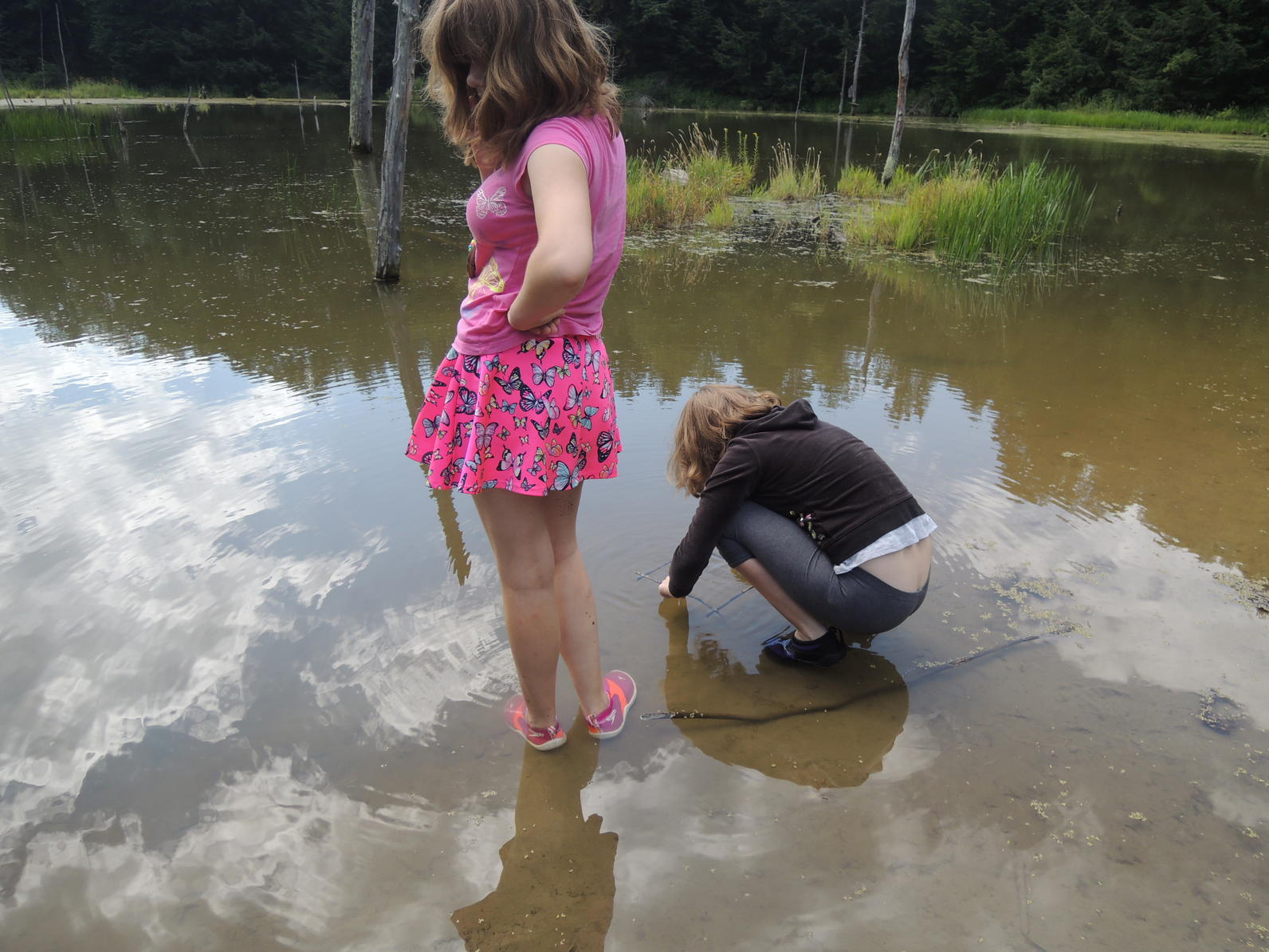 Water ecology camp