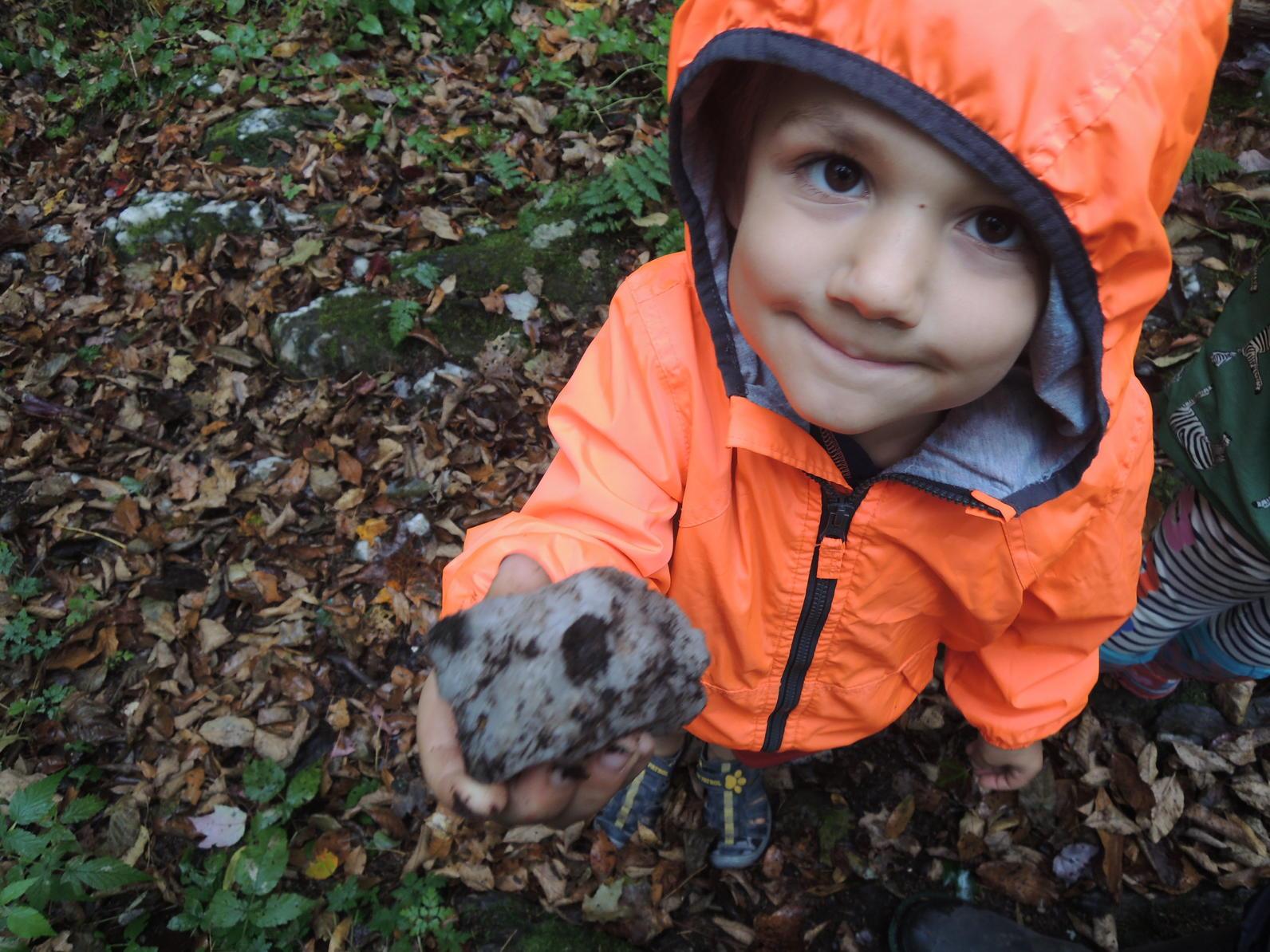 Preschooler With Rock