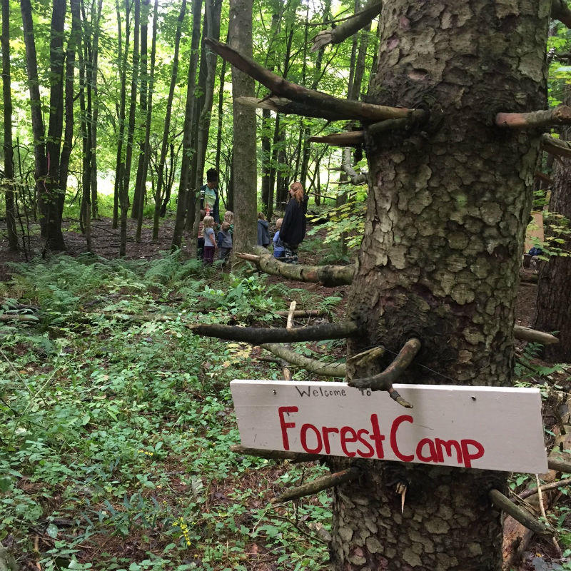 Forest Camp sign