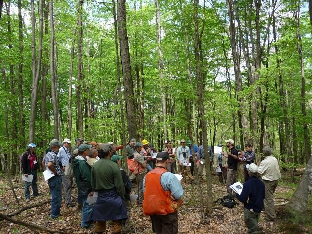 Forester_workshop