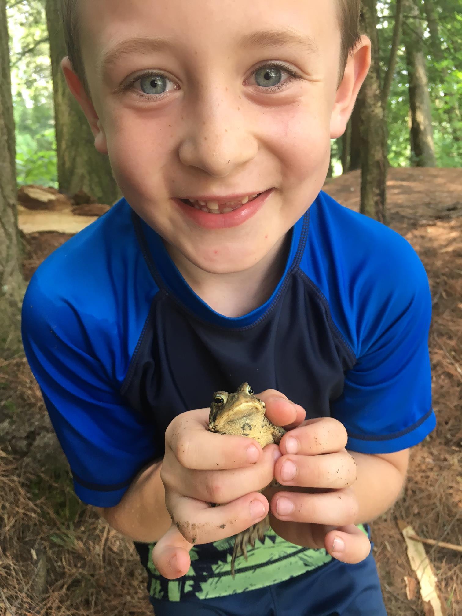 Frog at camp