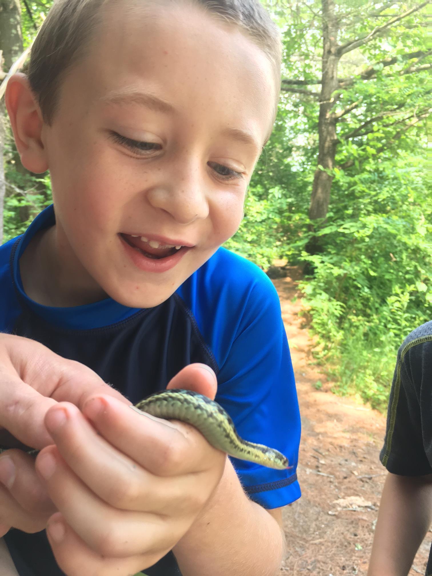 snake at camp