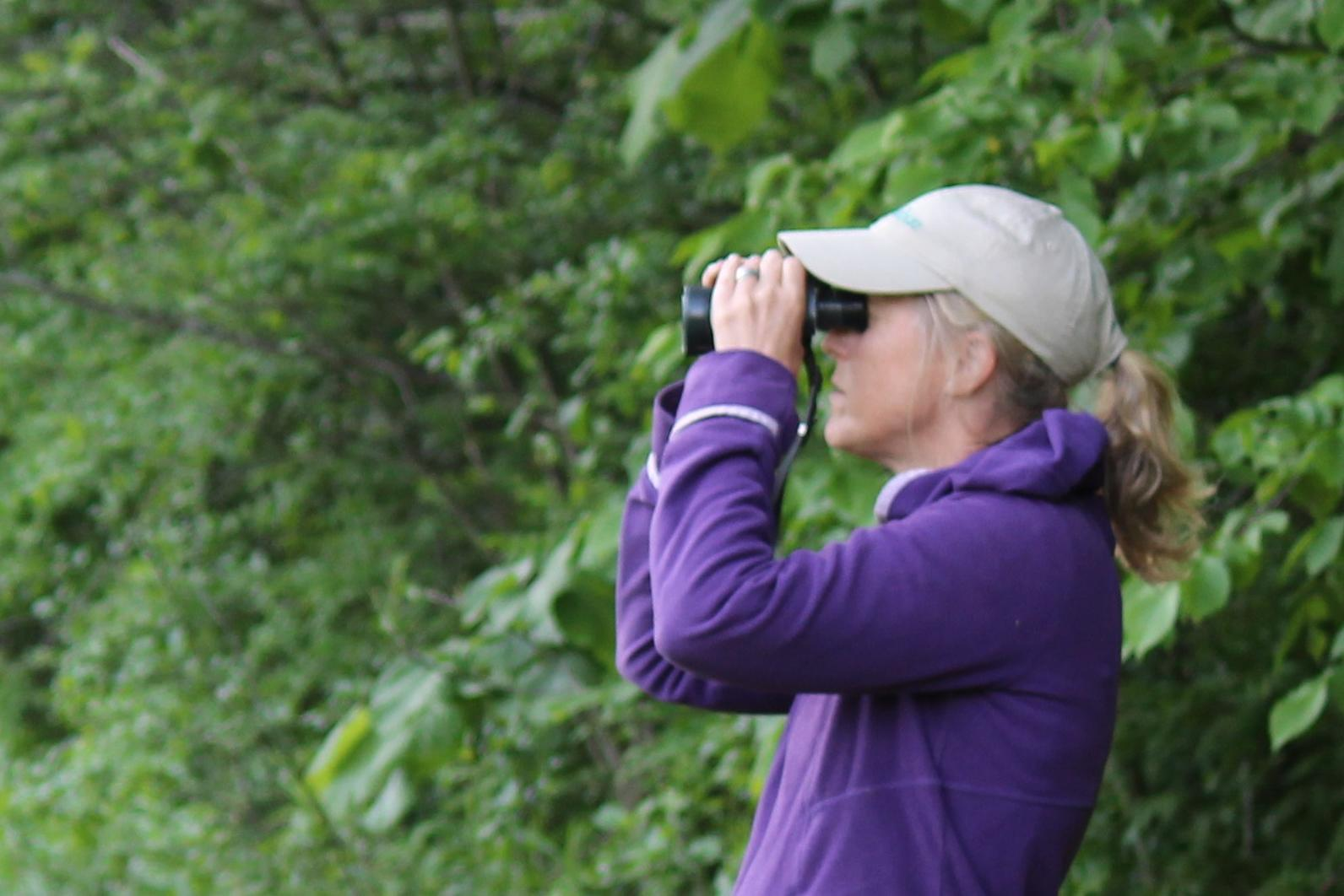 Audubon Vermont Staff