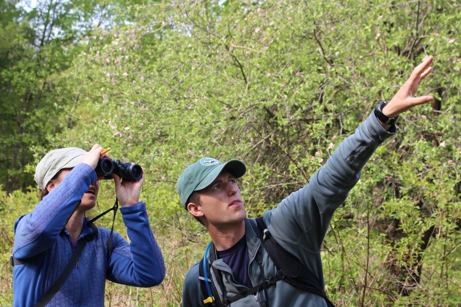 Audubon Vermont Intern