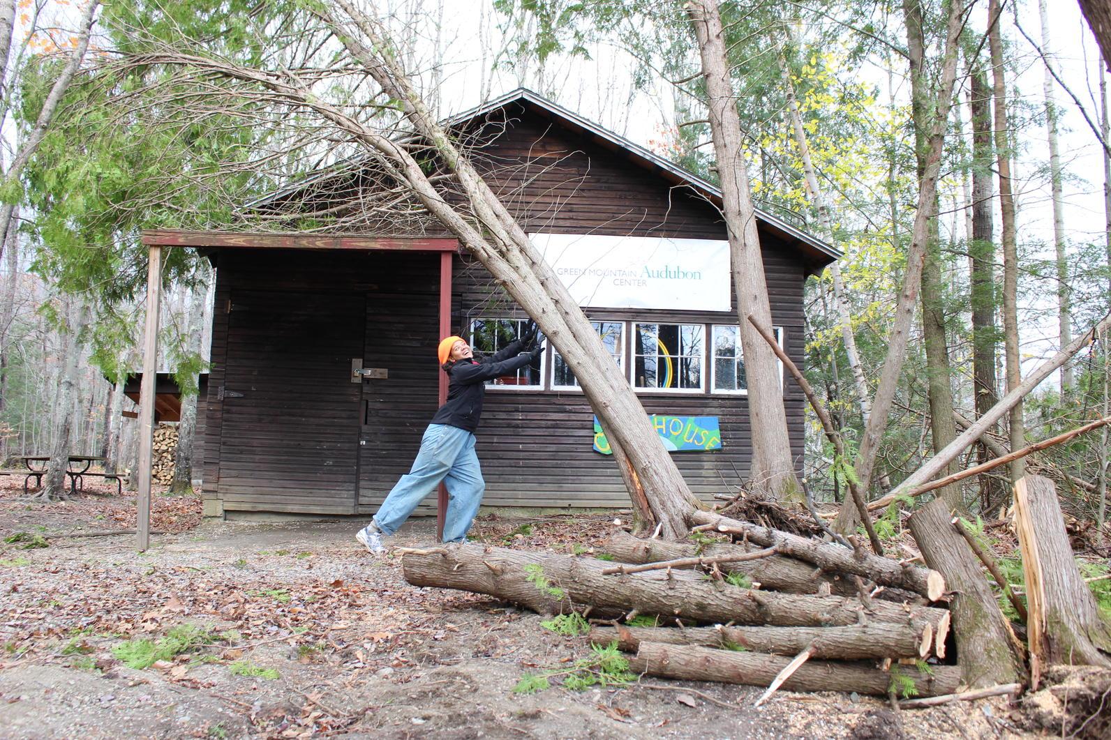 Wind Storm Recovery_Audubon Vermont