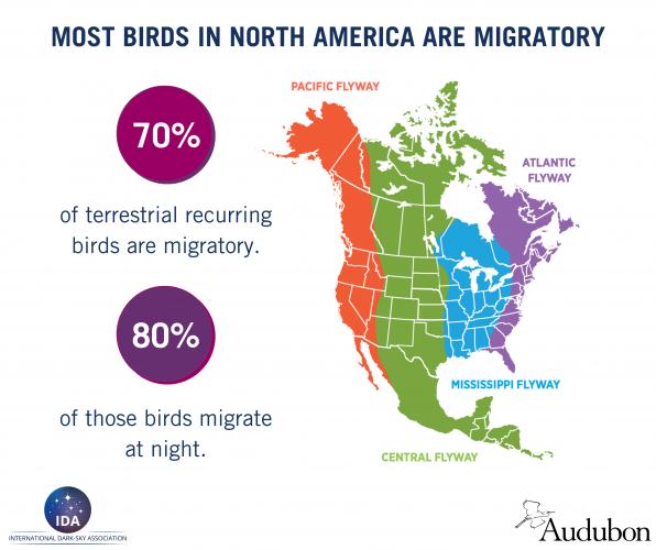 Lights Out - Migration Maps