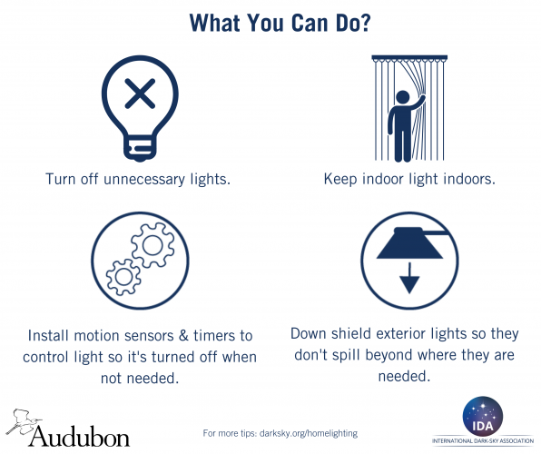 Lights Out - What Your Can Do