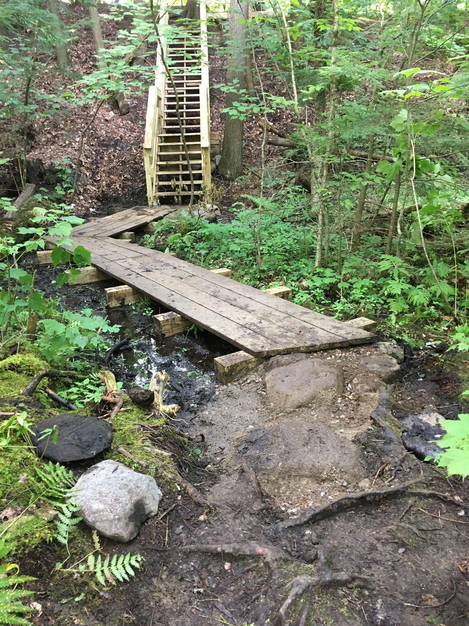 Hemlock Swamp Stairs
