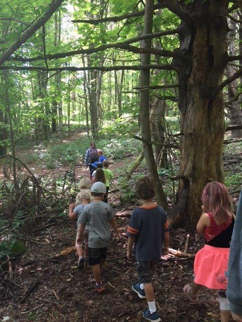 Hiking Pre-K Camp